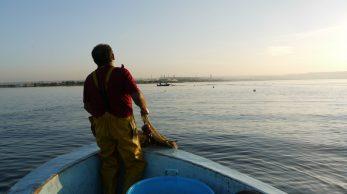 [Au bord de l'etang] Embarquement avec Dominique, pecheur d'anguilles 1